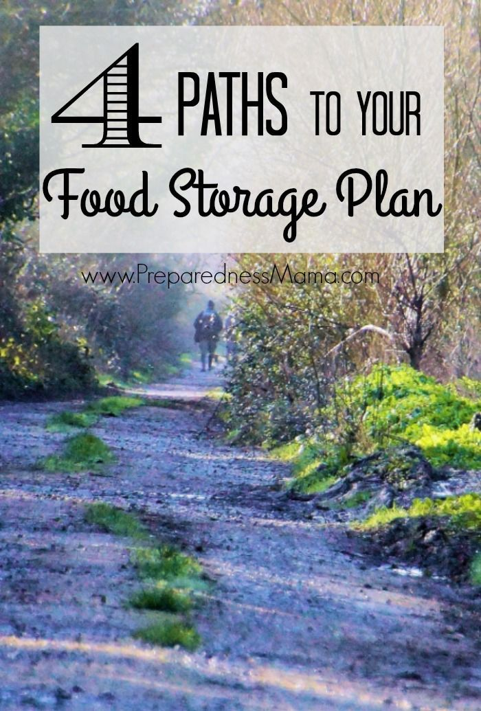 4 Paths to your food storage plan. With cost and time commitments for each | PreparednessMama