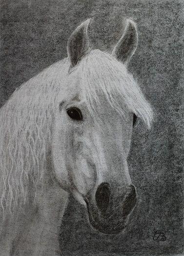 Pferd - Kohlenbild.  www.christopher-baumans-bilder.com