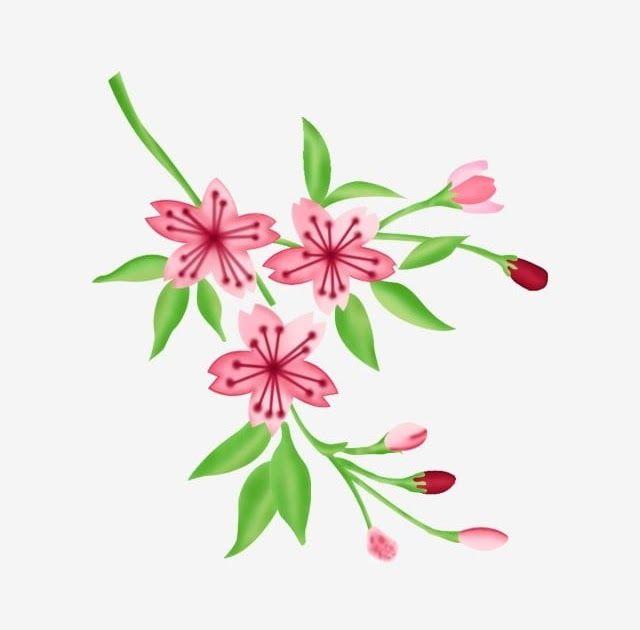 20 Gambar Bunga Yang Mudah Berwarna Pereka Bunga Berwarna Merah Jambu Kreatif Yang Mudah Dicipta Download Cara Mengawetkan Bunga Di 2020 Gambar Bunga Bunga Kertas