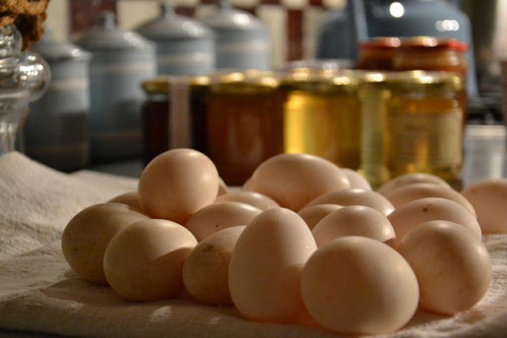 fresh eggs # our ingredients # fresh pasta # B&B Cà Bianca dell'abbadessa, bologna ITALY #