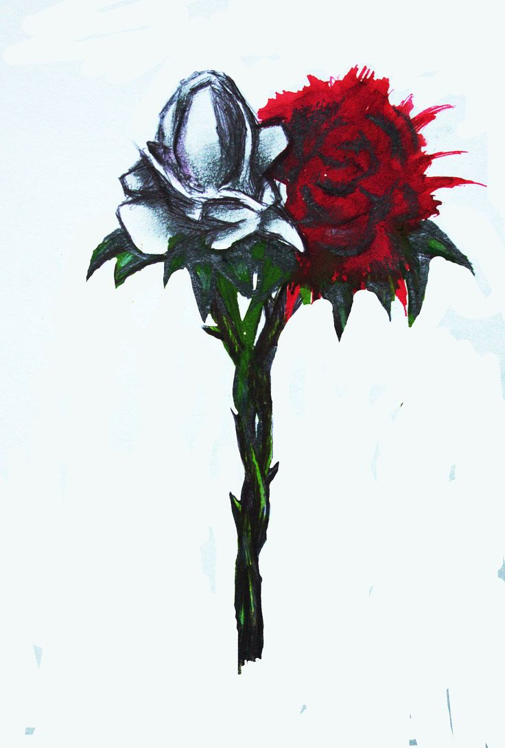 Roses are red, but there are white ones too. Ink, ballpoint, and pencil.