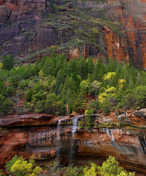 Cascades At Emerald Pools Zion National park, Utah By Tim Fitzharris