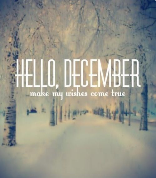 Wishes Do Come True Quotes: Best 25+ Winter Quotes Ideas On Pinterest