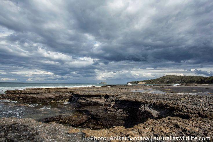 #Stormy #sky over Pebbly #Beach #NSW #Australia #aus_wildlife