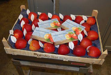 Zauberhaftes Küchenvergnügen: Schnelle Apfel-Quark Tarte
