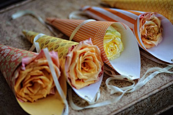 Real DIY {Virginia} Wedding - Candace & Matt - The Bride's Cafe (Paper cones to hang on the aisle chairs)