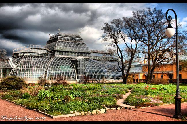 оранжерея ботанического сада в париже: 16 тыс изображений найдено в Яндекс.Картинках