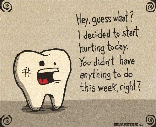 #zerodonto #funny #Dentistry