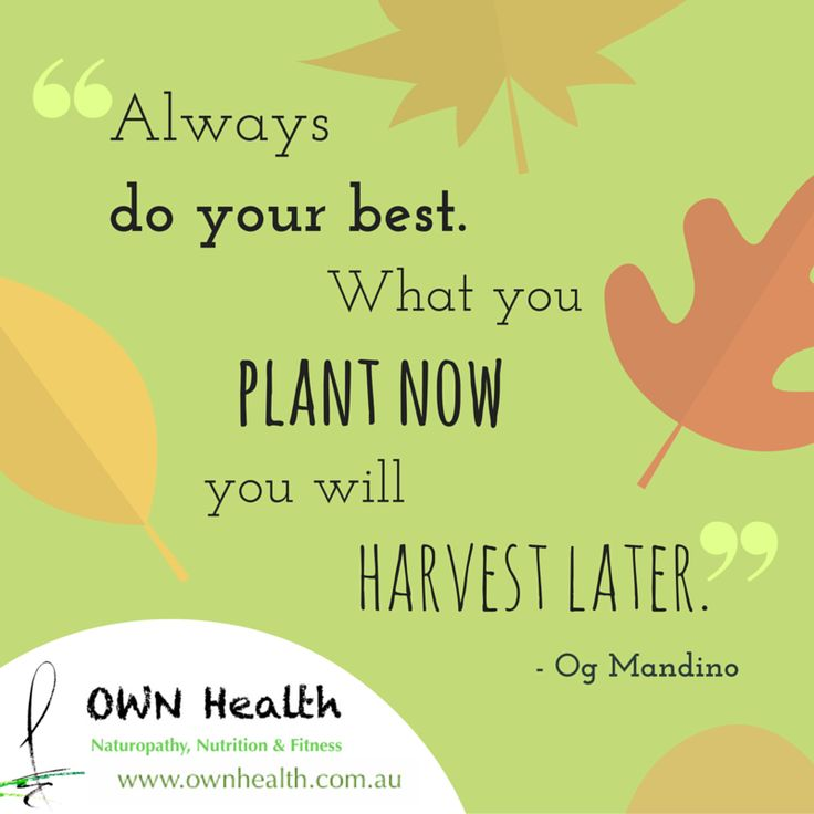 """""""Always do your best. What you plant now you will harvest later."""" - Og Mandino"""