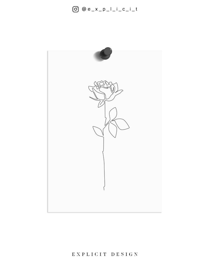 Rose Drawing Printable, Abstract Minimalist Art, Thin White Roses Print, Fine Line Flower Wall Prints, Botanic Poster, Subtle Lines Artwork – joy