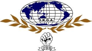 IMPORTANTE, aquí se encuentra el calendario oficial de YIKGA para el año 2013.