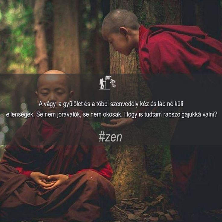 Zen közmondás. A vágy, a gyűlület és a többi szenvedély...