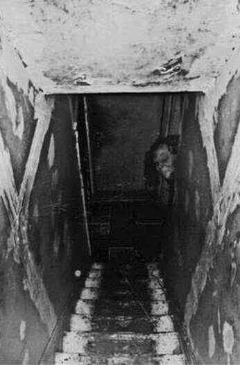 Before you go to bed, go check out the noise you just heard in the basement.