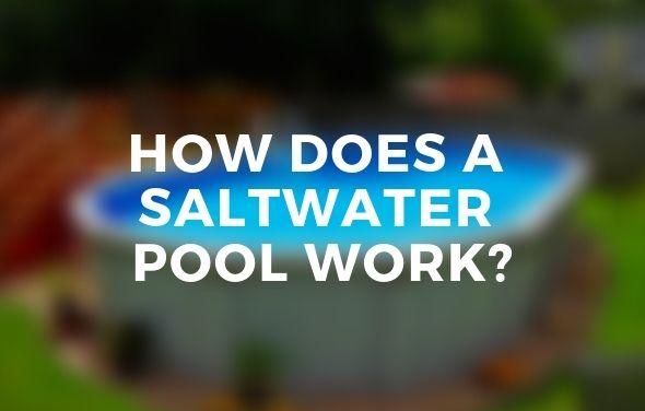 Saltwater Pools Work Saltwater Chlorination Explained In 2020 Saltwater Pool Swimming Pool Galleries Best Above Ground Pool