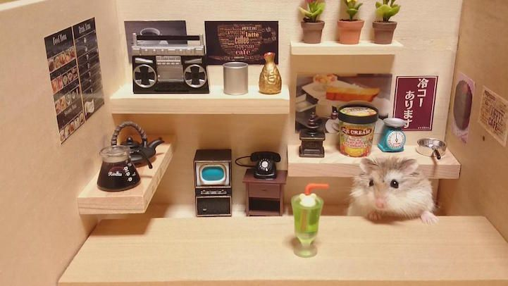 hamsters-bartenders-serving-tiny-food-and-drinks-06