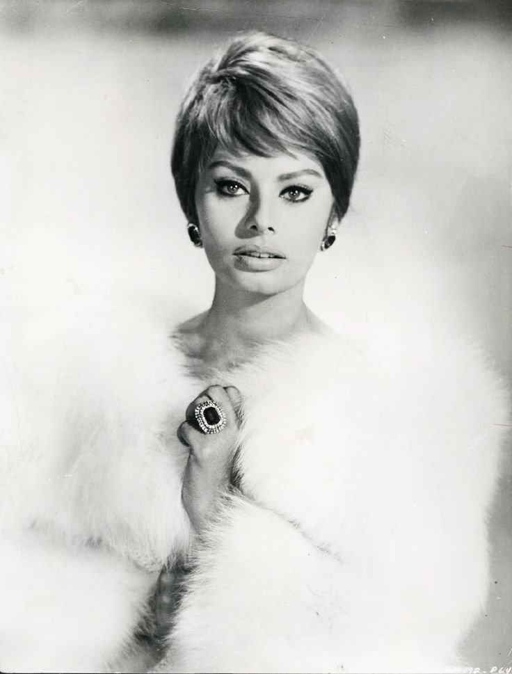 Sofia Loren one of the most beautiful women in the world.