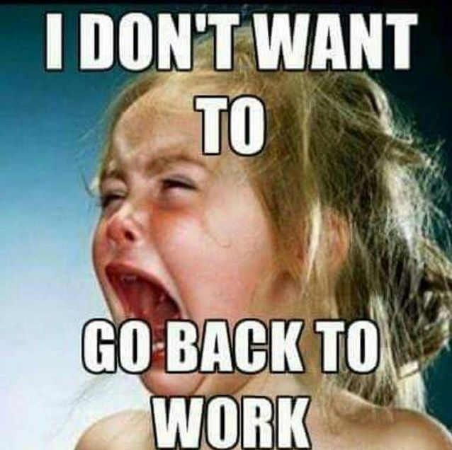 Summer holidays are over, back to work tomorrow....