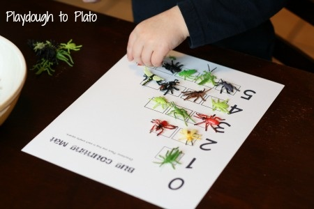 Bugs and Butterflies Math and Literacy Activity Pack. Perfect for preschoolers!