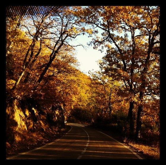 Autumm road trip
