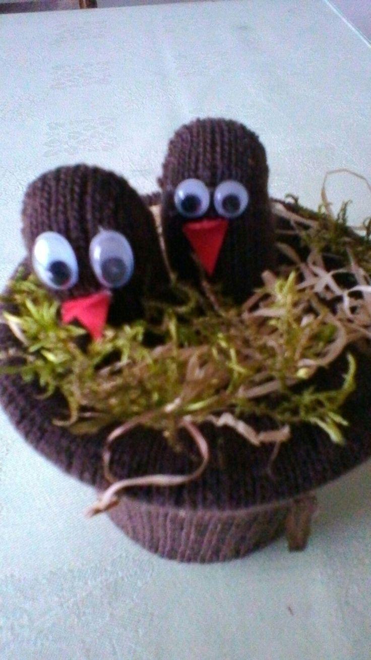 Jarní hnízdo