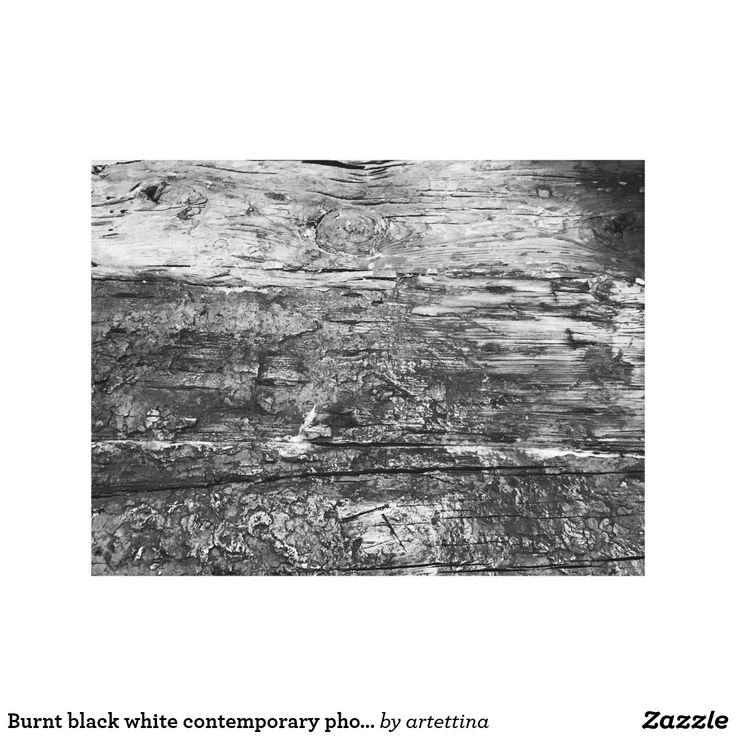Burnt black white contemporary photography