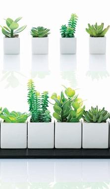 ASA Selection Planters
