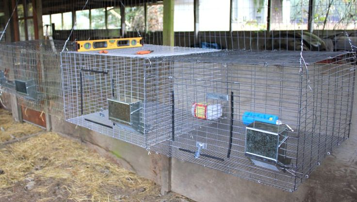 Hanging All-Wire Cages for Rabbit health