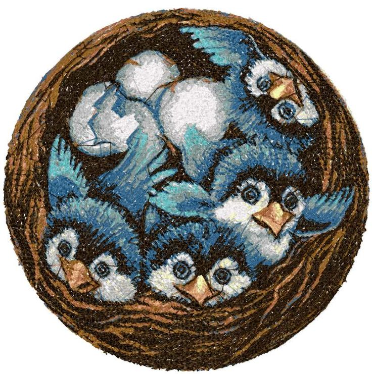 Size: 8.54 x 8.5 Chicks photo stitch free embroidery design - Machine embroidery forum