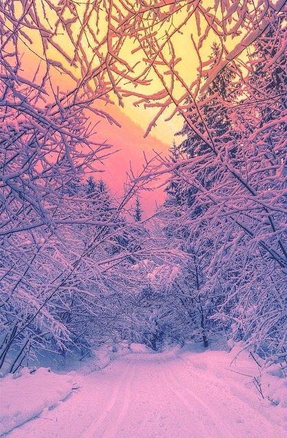 Sunshine - perfect world