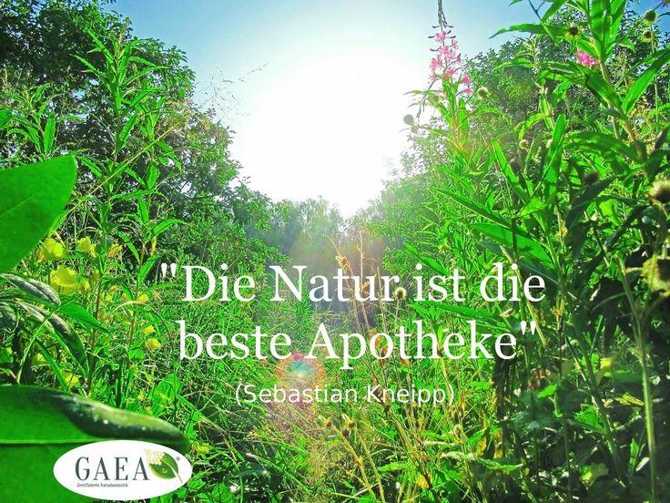 #Zitate #Inspiration #Natur #Naturkosmetik #Apotheke ...