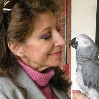 """O papagaio com as últimas palavras comoventes.  Alex, o papagaio cinza Africano, foi capaz de contar e identificar as cores, e ele tinha uma bela relação com essa mulher da foto, Irene Pepperberg. Quando Alex morreu em 2007, suas últimas palavras para ela foram """"Você é boa. Eu te amo."""""""