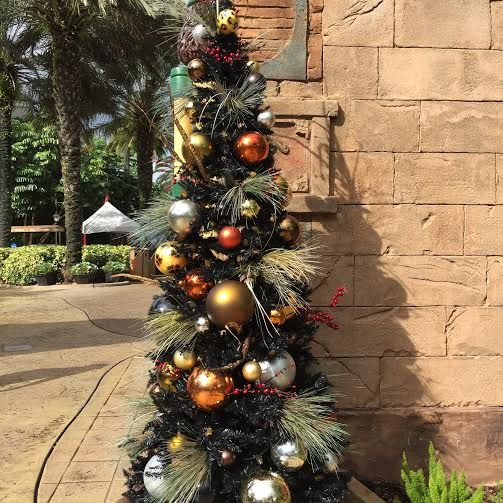 African Christmas Tree Festive Christmastown