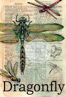 Dragonfly Mixed Media Drawing on Distressed, Dictionary Page - available for purchase at www.etsy.com/shop/flyingshoes - flying shoes art studio