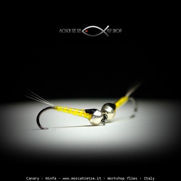 Ninfa Canary – Moscatzetze.com
