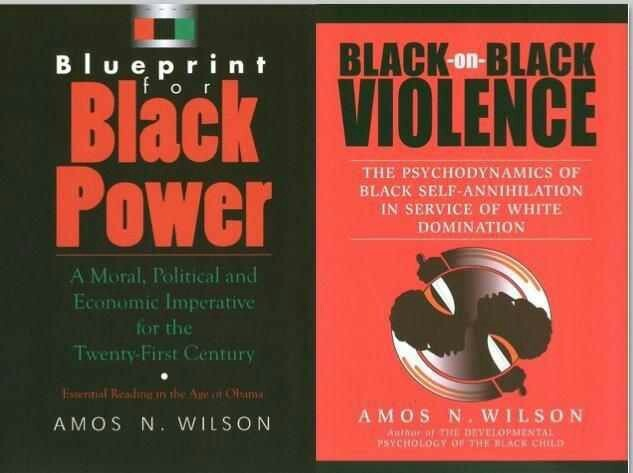 22 best black books images on pinterest black books african blueprint for blackpower by amos wilson malvernweather Images