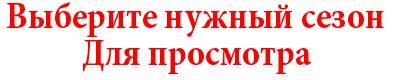 Котенок Томас Сострадание-НН