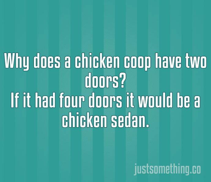 Best Most Hilarious Jokes Ideas On Pinterest Work Day Humor - The 22 most hilarious two line jokes ever 7 killed me
