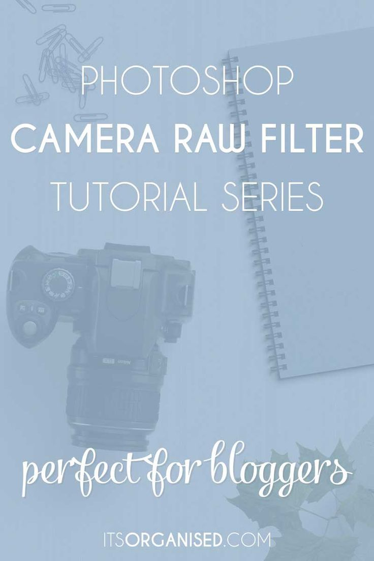 Photoshop Camera Raw Filter Series - Five-video series with great tips for blog photos.