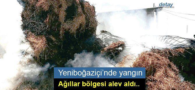 Yeniboğaziçi'nde yangın
