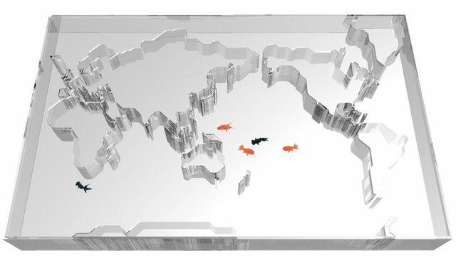 World Map Aquarium Makes Fish Think They Can Swim Around the Globe