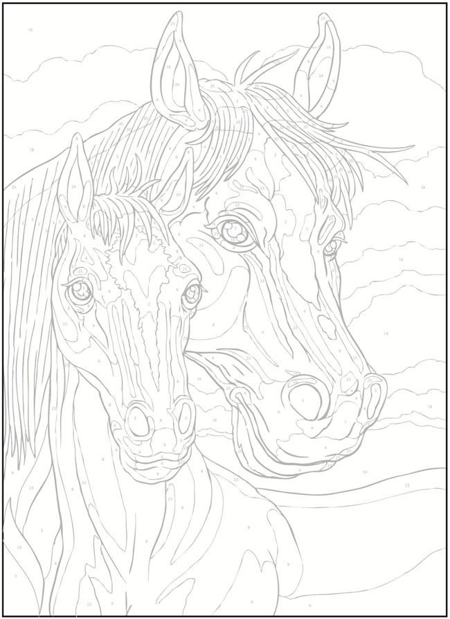 Welcome to Dover Publications / Creative Haven Horses Color by Number Coloring Book / George Toufexis