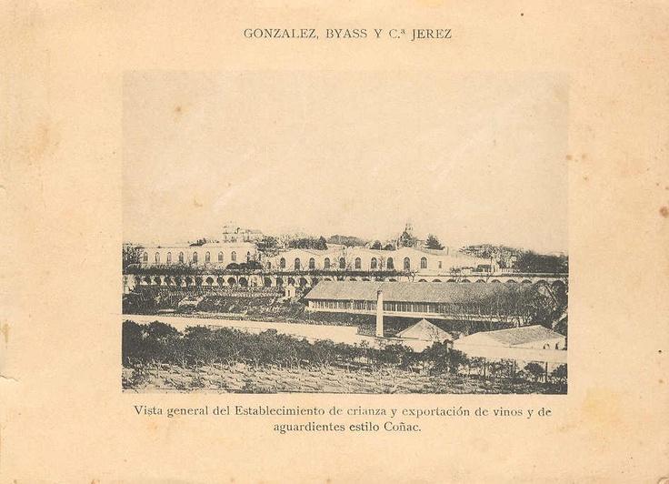 Vista general del establecimiento de crianza y exportación de Vinos y Brandy.