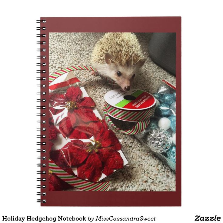 Holiday Hedgehog Notebook