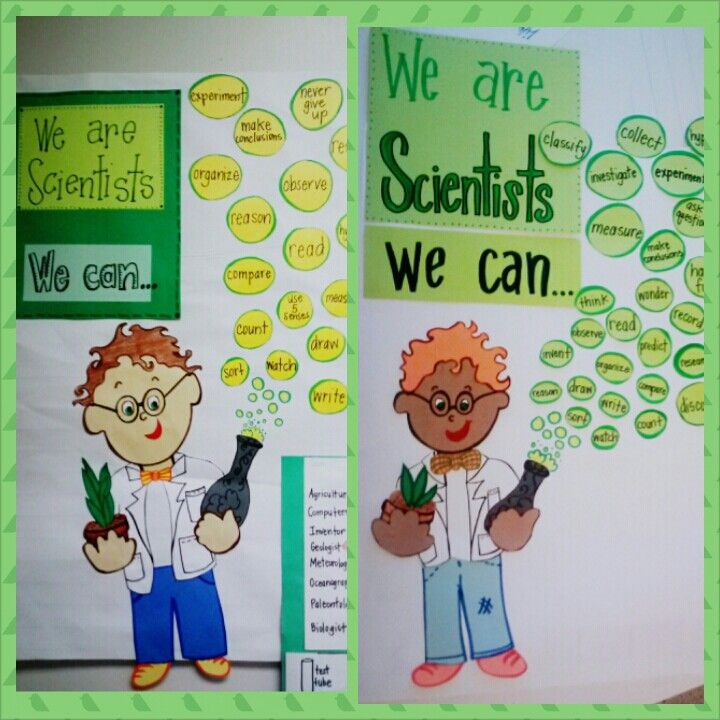 First grade Scientist anchor chart