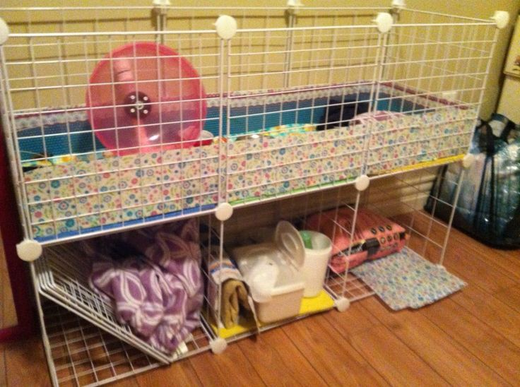 Hedgehog cage made out of storage cube - Practical and ...
