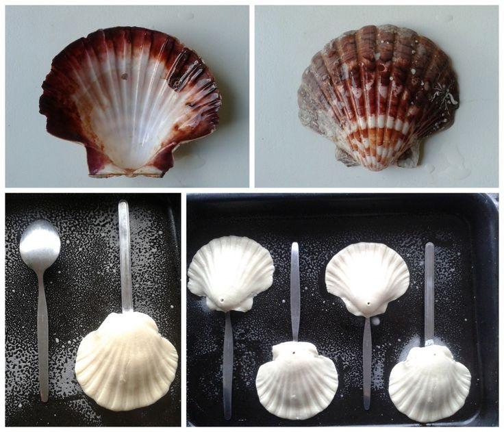 Baking my own Sea Shells <3 Follow! PIN!