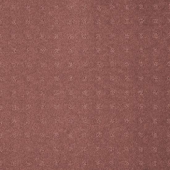 Live the WHIMSICAL trend with Redbook Total 'Total Appeal' carpet in colour 22/- Guava #red #bright #carpet