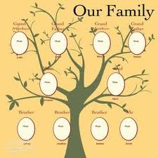 17 Best images about Genealogy for Kids on Pinterest | Family tree ...