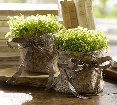 burlap covered flower pots.