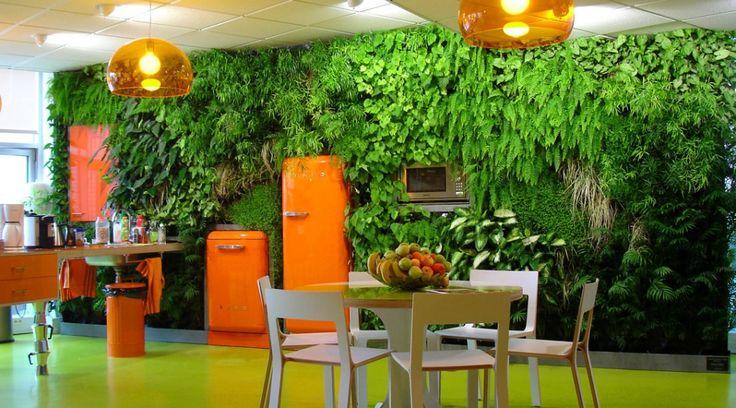 26 best Vegetalisation Appart images on Pinterest Vertical gardens - rendre une terrasse etanche